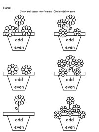 Even or Odd Worksheets to Print