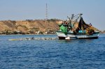 Pesca ilegal frente a Punta Sal_Foto Yuri Hooker