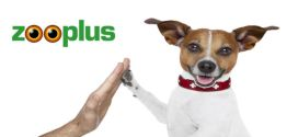 Participa en el sorteo de un lote Zooplus para tu perro