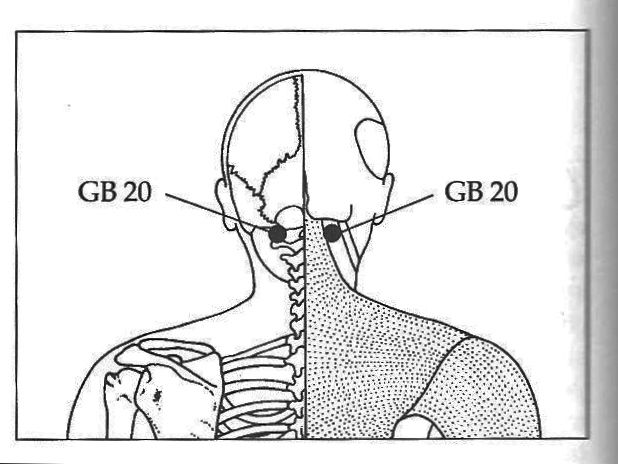 Tinnitus Ringing Ear Acupressure Points for the Kidneys  Lower