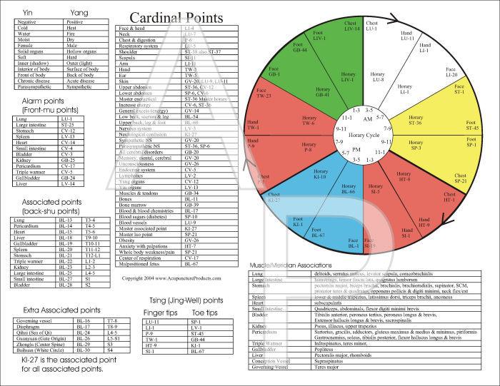 acupuncture meridians chart - Heartimpulsar