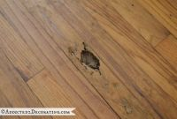 Goodbye, Green Carpet! Hello, Original Hardwood Floors!