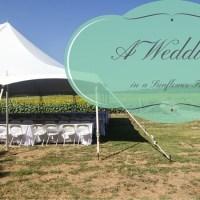 A Wedding in a Sunflower Field