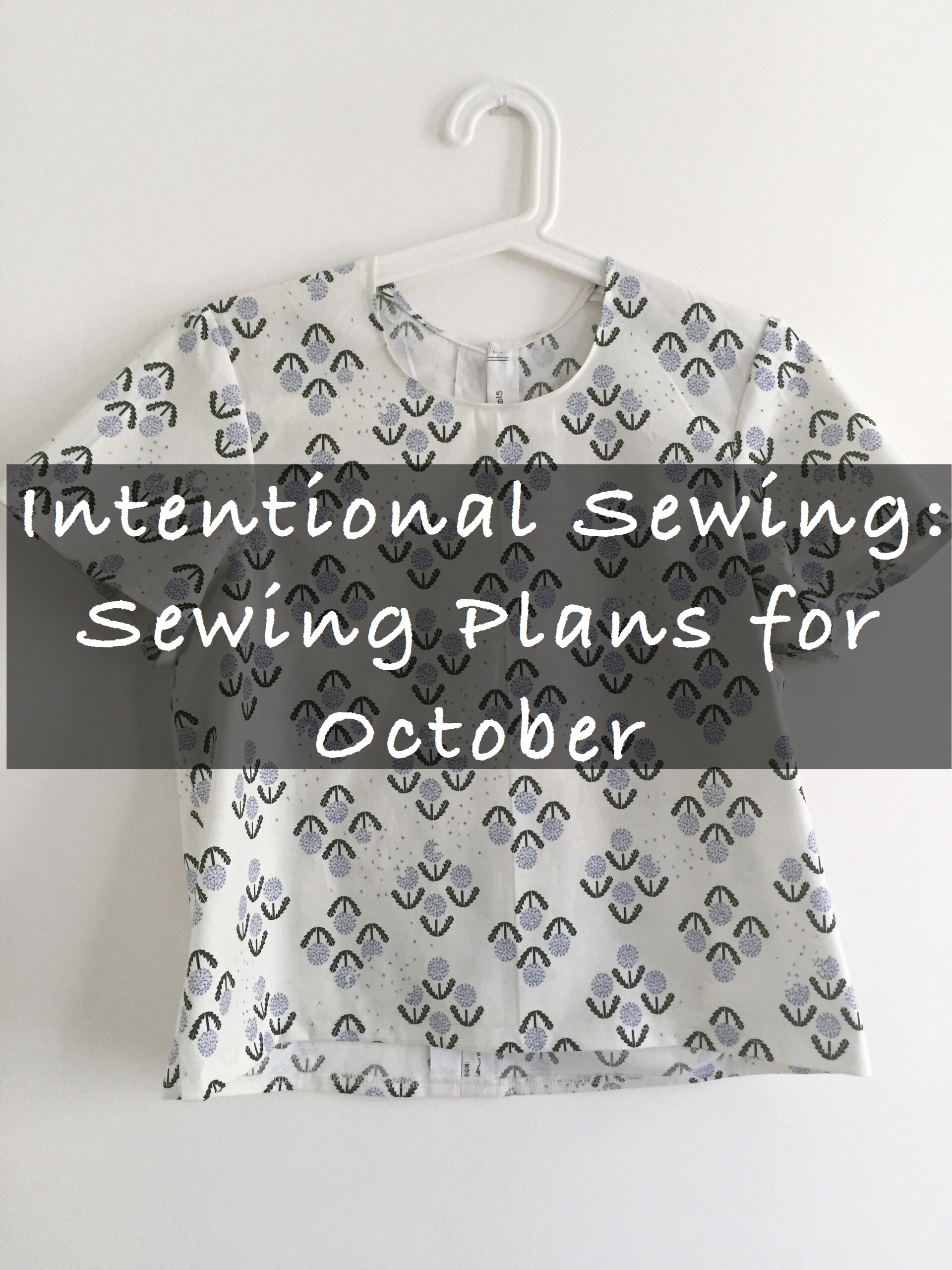 oct_sewing_plans3