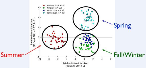 Steller Sea Lion Fatty Acid Analysis, Alaska Department of Fish and Game
