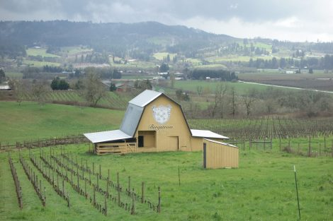Bergstrom Vineyard in the Willamette Valley