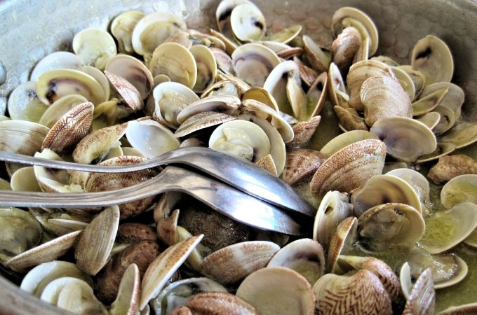 steamed-clams-603110_1280