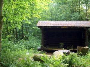 Wolf Pond lean-to site