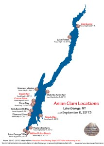 Asian Clam Locations on Lake George Sept 6 2013