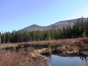 Western_Ridges_LoonLakeMountains
