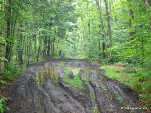 ATV Trail Damage in the Black River Wild Forest