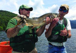Adirondack Lake Trout