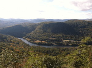 view from huckleberry mountain forest