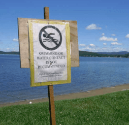 lake champlain no swimming sign
