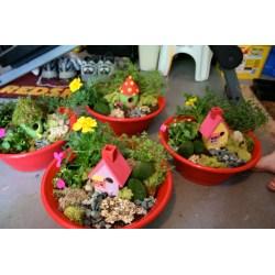 Small Crop Of Kids Fairy Garden Kit