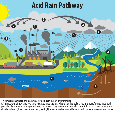 Project Cars Changed My Wallpaper Acid Rain Adirondack Council