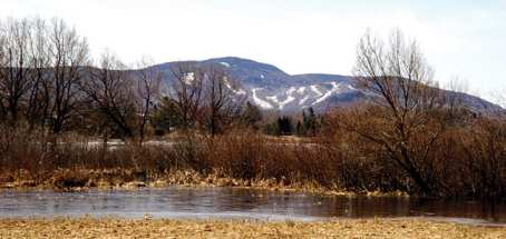The homes would be built near the Big Tupper Ski Area on Mount Morris.
