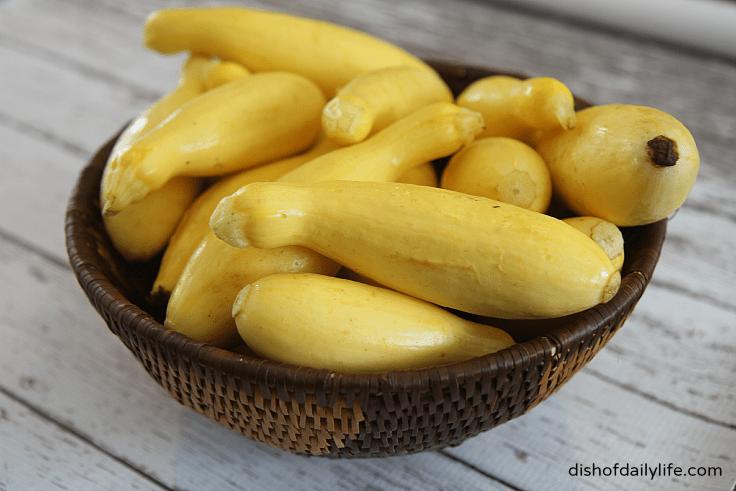 yellow squash for Kousa