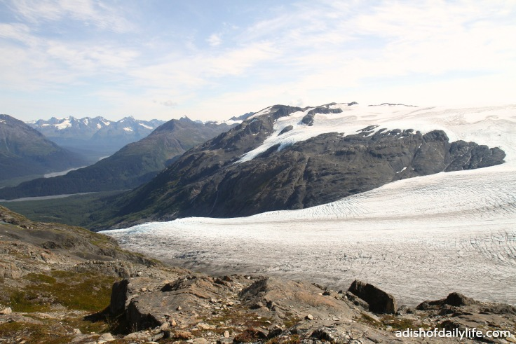 Harding Icefield top of the hike