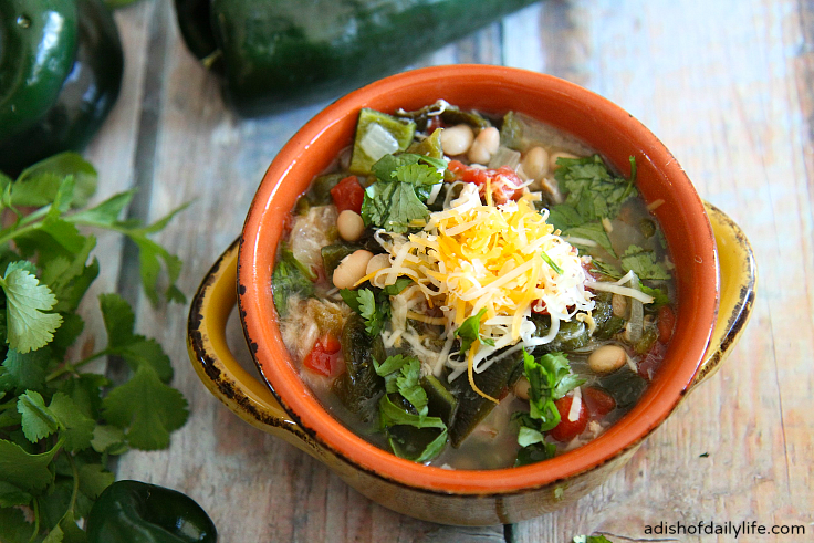 Slow Cooker Pork Green Chile Stew