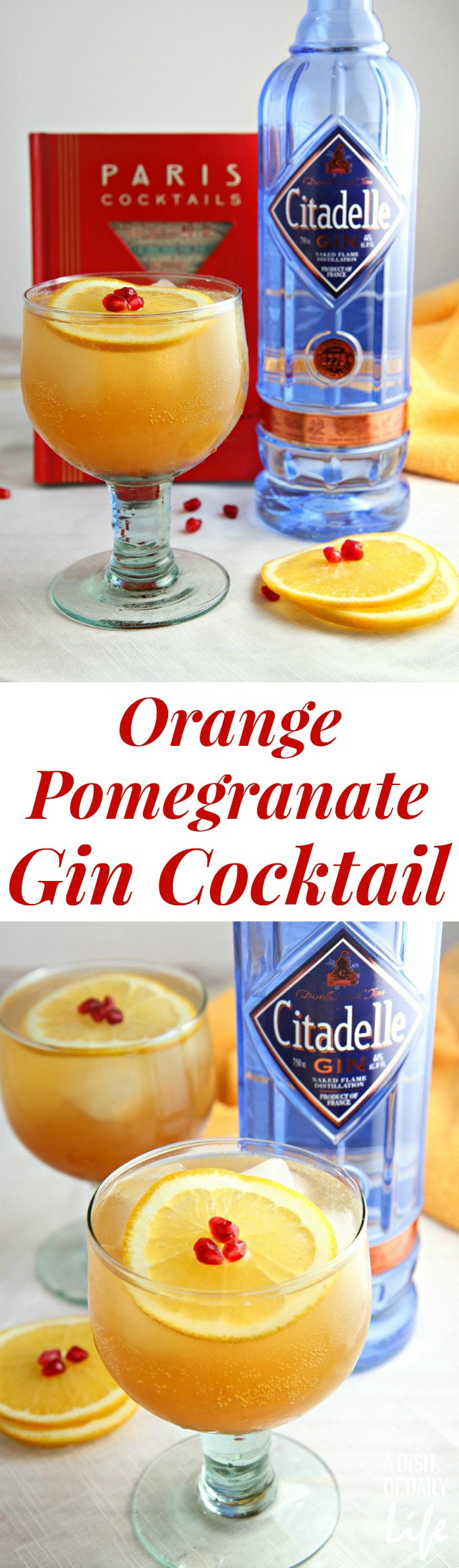 Orange Pomegranate Gin Cocktail