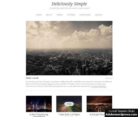 Deliciously Simple WordPress Teması