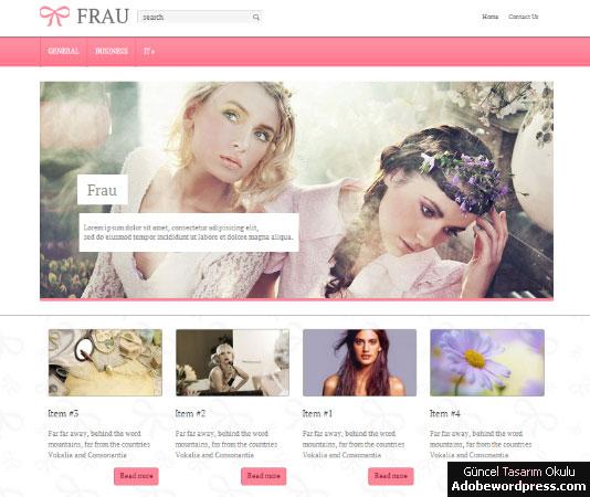 Frau WordPress Teması
