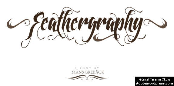 Feathergraphy Decoration