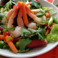Rainbow Carrot Shrimp Salad