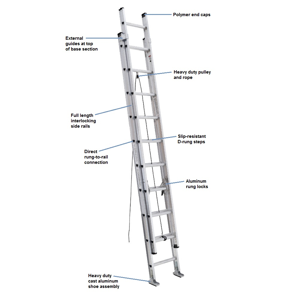 parts of ladder diagram