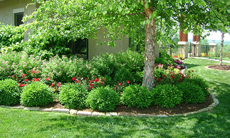 Landscaping-Ideas-and-Gardening