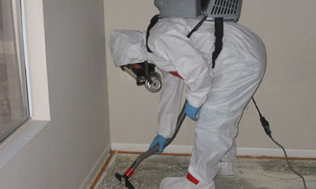 Mold-Removal-Advanced-contractor