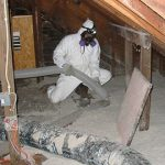 Mold-Removal-for-Renovation-and-Remodeling