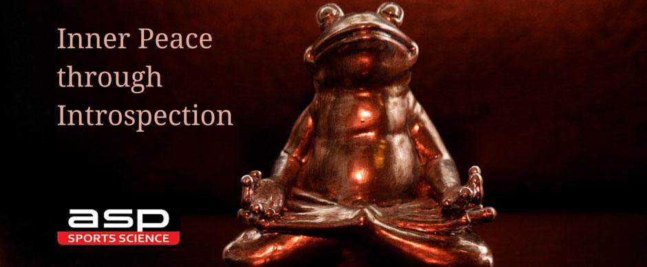 inner peace through introspection ref:Mathias Klang