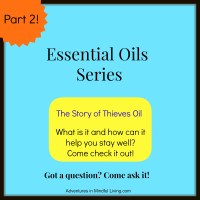 The Story of Thieves Oil (Part 2 of the Essential Oils Series)