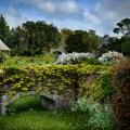 Beaulieu, England. @PhillipGlickman Photography story by Penny Sadler