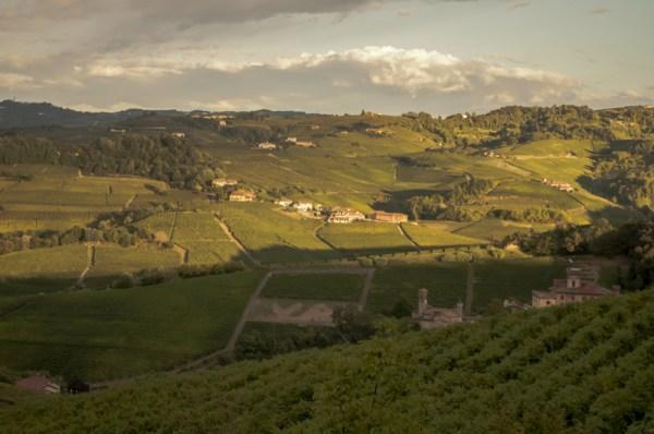 Langhe wine country, Piemonte, Italy @PennySadler 2015