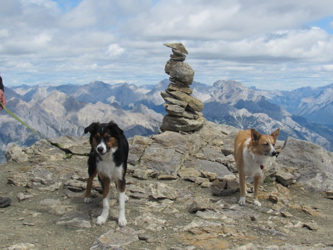 Lupe and Marshall at the Mount Bourgeau summit cairn.