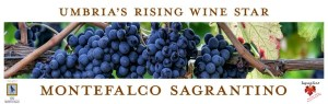 Italy's Sagrantino di Montefalco is Umbria's Rising Wine Star @Sagrantino #Sagrantinomonth