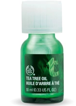 body shop tee tree oil