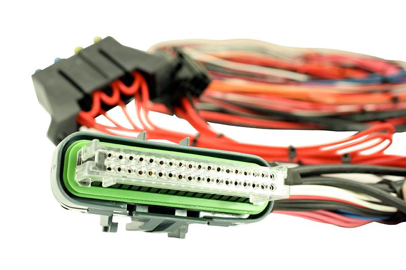 Universal Programmable EMS-4 Wiring Harnesses AEM