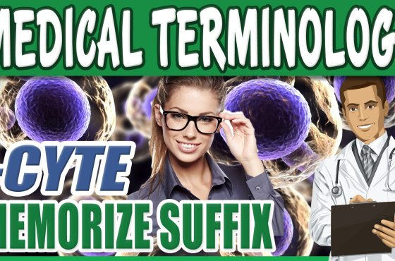 Medical Terminology Course Dictionary List Memorize CYTE AE Mind Memory Training with Luis Angel Medical Students Pre Med Nursing School