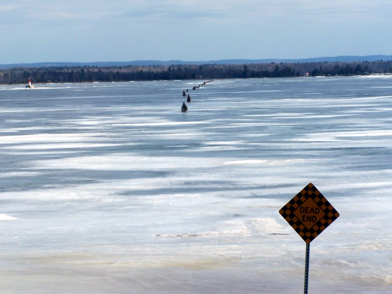 Trees lined up across the Ottawa River late in the season, the ice is melting.