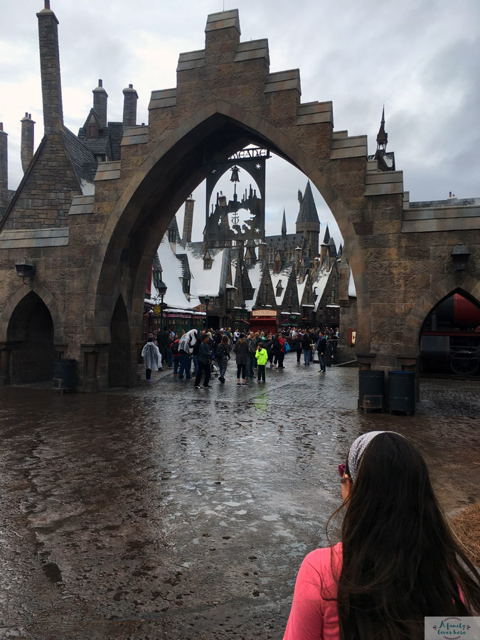 hogsmeade entrance