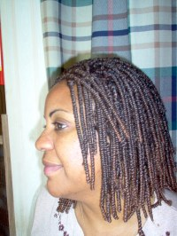 Nubian Twist Braids | www.imgkid.com - The Image Kid Has It!
