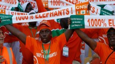 Supporters-elephants