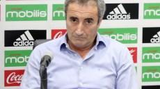 Djamel-Menad