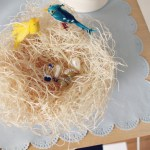 DIY Bird's Nest Bowl