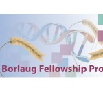Borlaug International Agricultural Science and Technology Fellowship for Developing Countries 2017 – USA