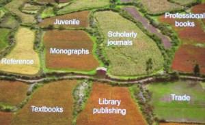 Fields of publishing